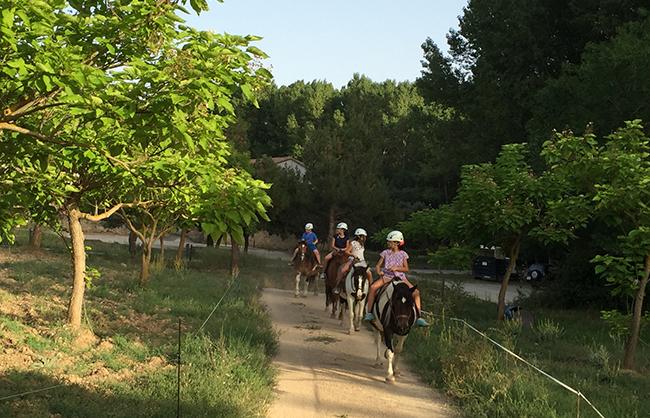 elsports_quehacer_turismo_activo_rutas_a_caballo_06