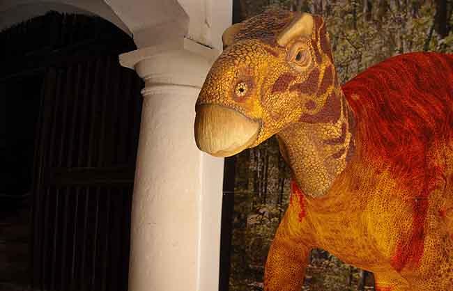pueblos-cinctorres-dinosaures-2